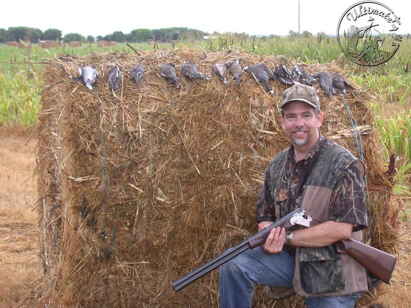 South Texas Dove Hunti...